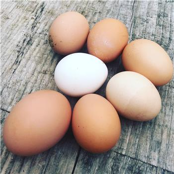 12 x South Lakeland Free Range Eggs - Large